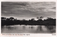 Down on the River Nile near Murchinson Falls, Uganda