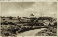"""Brackenhurst"" Limuru, Kenya"