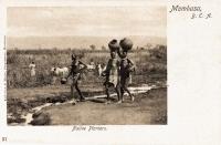 Native Planters