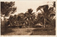 Native Houses, Mombasa, Kenya Colony