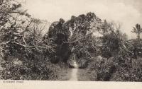 Kisiwani Road