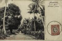 Mombasa Scenery
