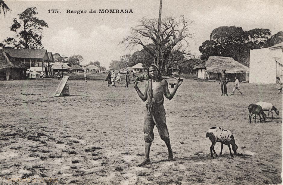 Berger de Mombasa