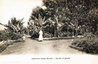Clairmont House near Nairobi - Corner of the garden