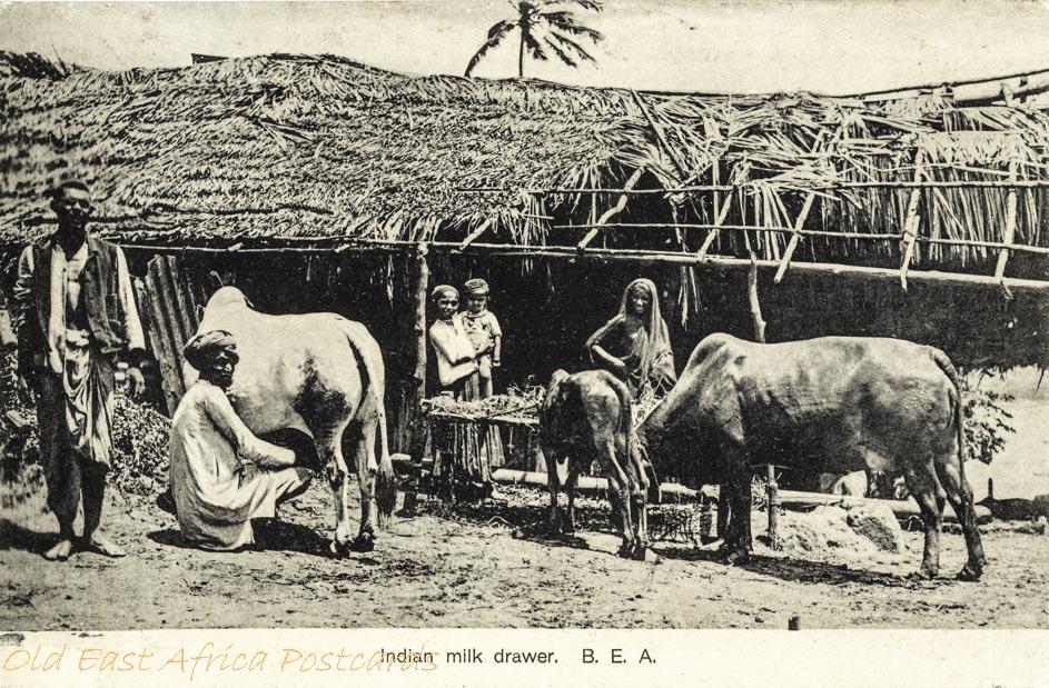 Indian milk drawer, B.E.A.