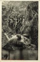 East Africa, a hippo