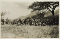 nil (a caravan of camels)