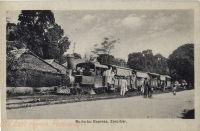 Bu-bu-bu Express, Zanzibar -
