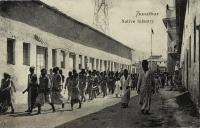 Native Infantry