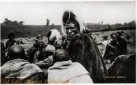 Native Council