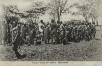 Kikuyus ready for safaris