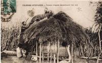 Femmes indigènes reconstruisant leur case