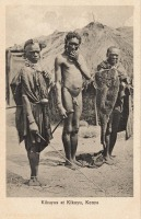 Kikuyus at Kikuyu