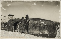 Amongst the Massai