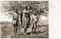Masai Natives