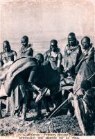 Kenia : Femmes Massaï pratiquant une saignée sur un veau