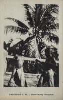 Zanzibar C.M. - Future boxing Champions