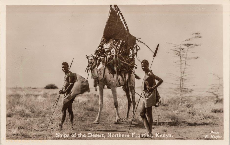 Ships of the Desert- Northern Frontier, Kenya