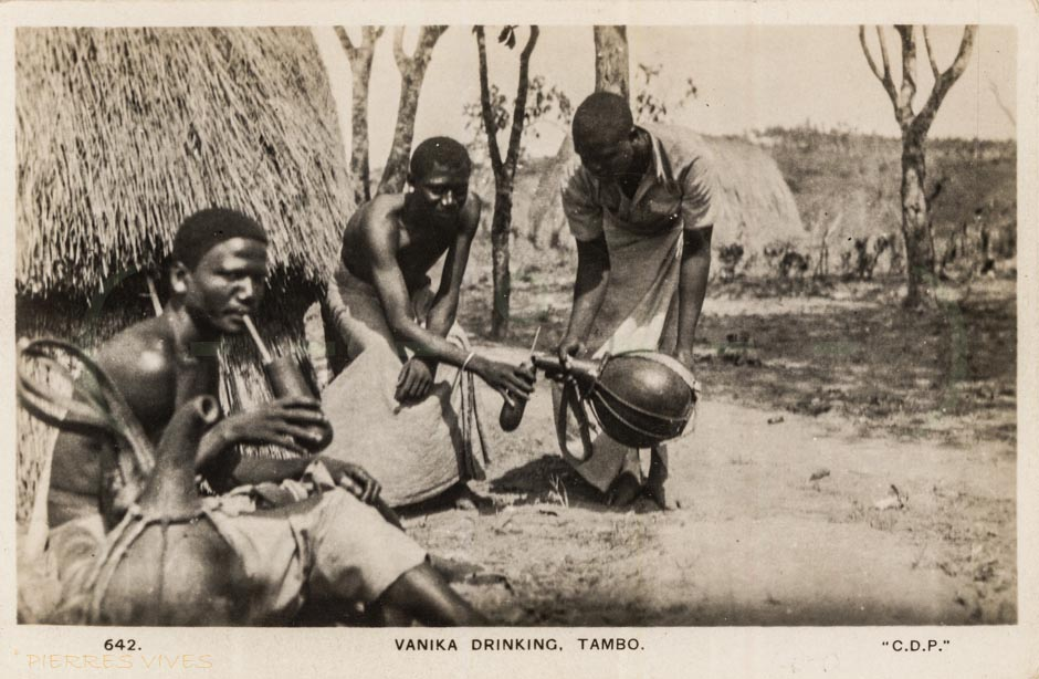 Vanika drinking. Tambo