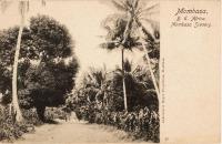 Mombasa, B.E.A. Mombasa Scenery