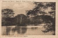 Le tranquille acque del fiume Sagana