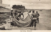 Net Fishing. Mombassa