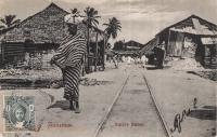 Native Street