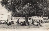 A resting tree wuika people. Mombasa