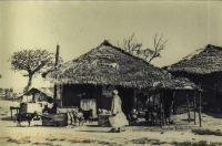Native Village, Mombasa