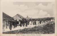 Natives Bringing Fruits to Market, Zanzibar