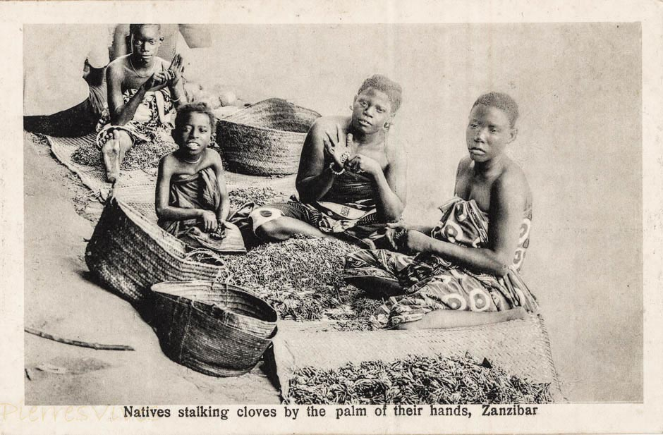 Natives stalking cloves by the palm of their hands, Zanzibar