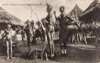 Shuli Women collecting Firewood (Nile)