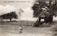 Vieux cimetière arabe