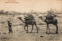 In the country - BRITISH EAST AFRICA