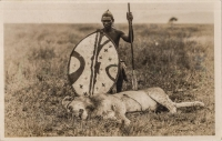 nil (Lion killed by a Masai Warrior)
