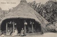 Typical Hut, Uganda