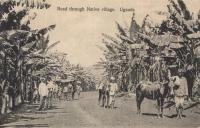 Road through Native Village. Uganda
