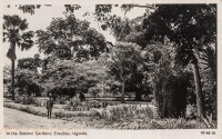 In the Botanic Gardens, Entebbe, Uganda -
