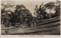 Botanical Gardens, Entebbe
