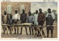 Serpente che ha inghiottito une piccola gazella