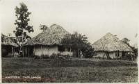 Homesteads, Jinja, Uganda