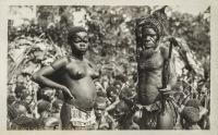 nil (couple of Pygmes)