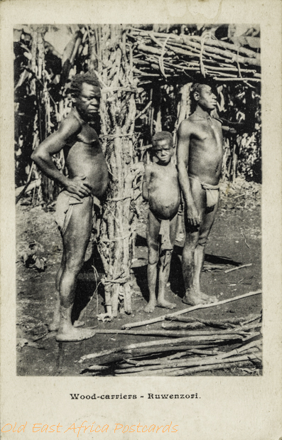 Wood-carriers - Ruwenzori