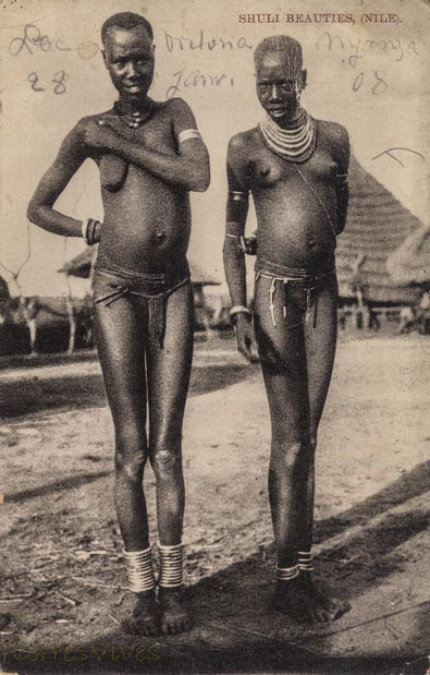 Shuli Beauties (Nile)