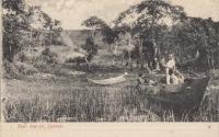 Sese Islands, Uganda