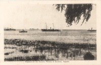 Steamers on the Victoria Nyanza at Entebbe, Uganda