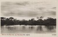 Dawn on the River Nile near Murchinson Falls, Uganda