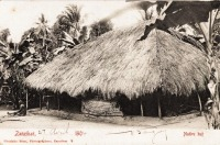 Native hut