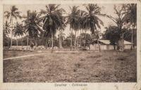 Zanzibar - Coltivation
