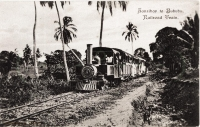 Zanzibar to Bububu Railroad train